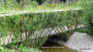 Pont osier vivant